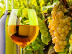 pic_beer_wine